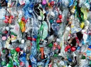 bottle collecting/recycling Adelaide